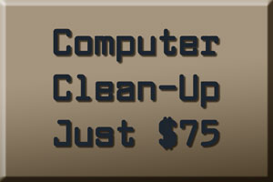 Computer Clean-Up in Seminole Florida